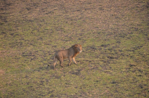 Gambella National Park, Ethiopia © Peter Fearnhead